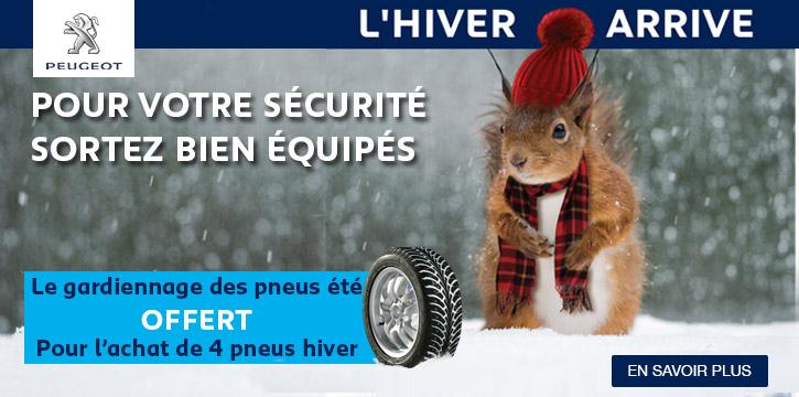 Gardiennage pneus hiver