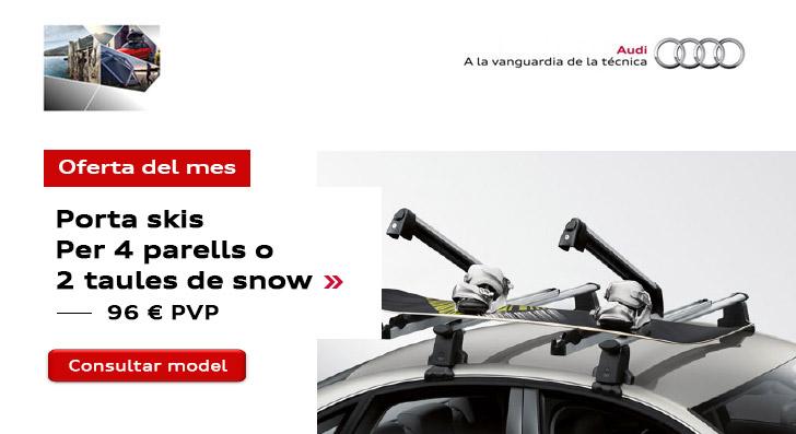 Oferta Accessoris Audi